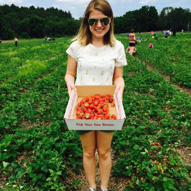 strawberry basket