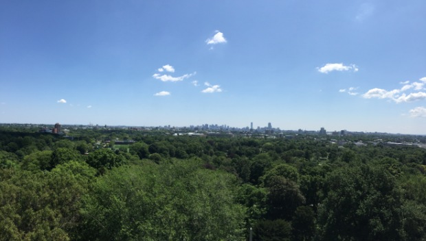 View from Washington Tower at Mount Auburn Cemetery