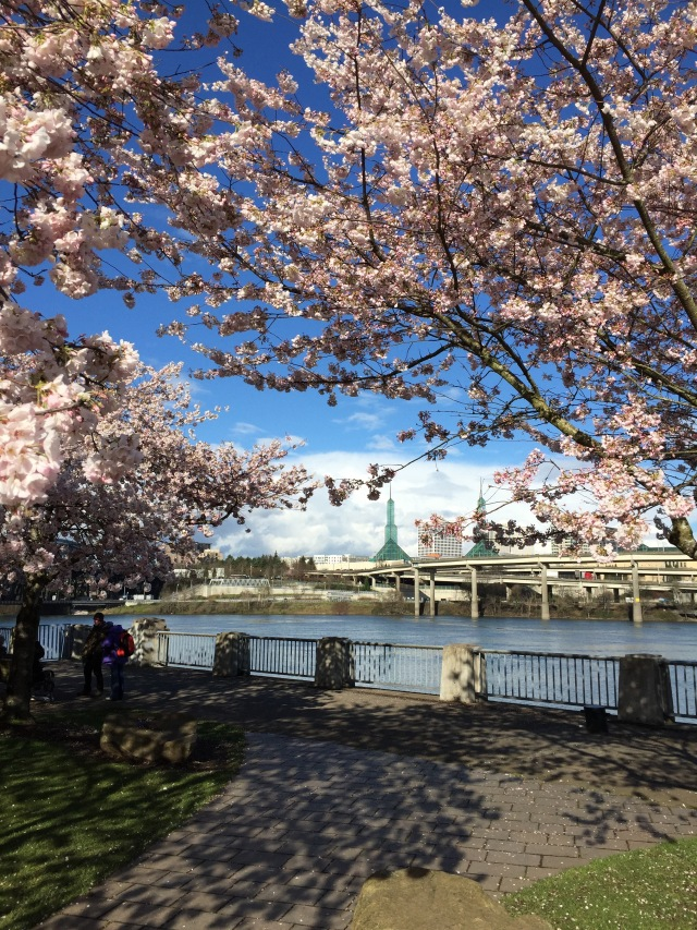 Portland Travels | Popcorn & Chocolate