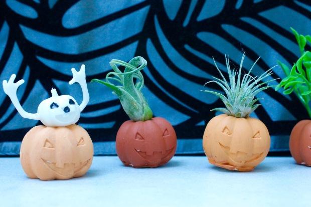 Halloween pumpkin air plant holders