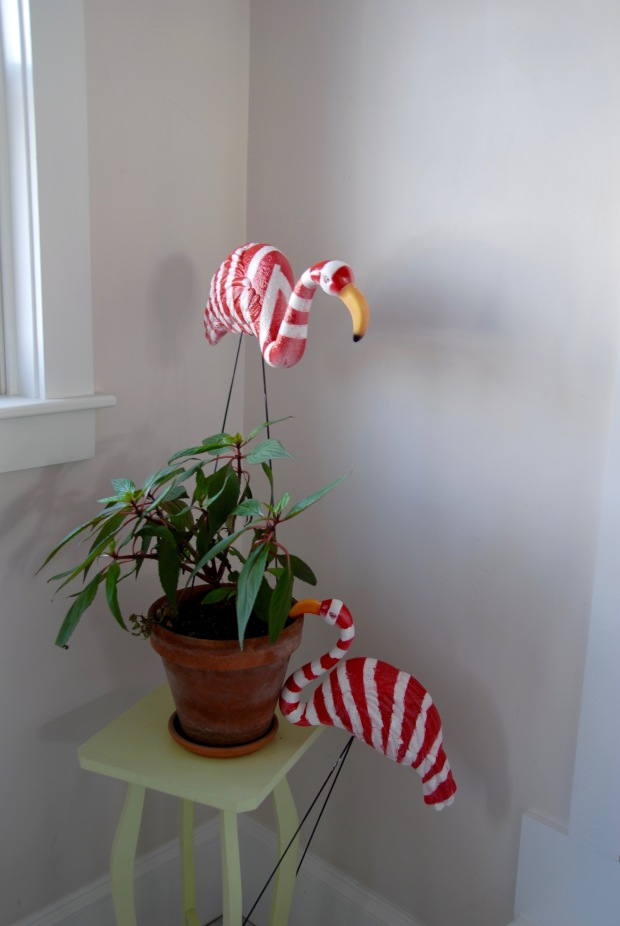Candy Cane Lawn Flamingos   Popcorn and Chocolate