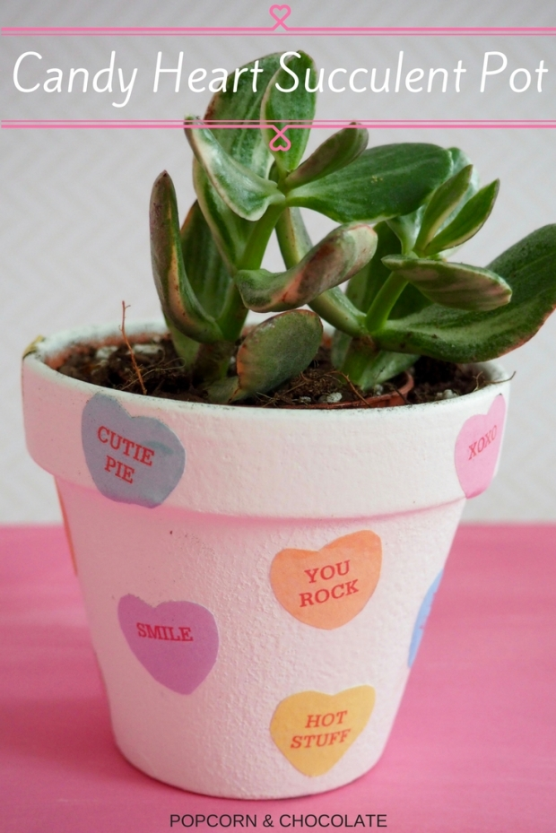 Candy Heart Succulent Pot | Popcorn and Chocolate