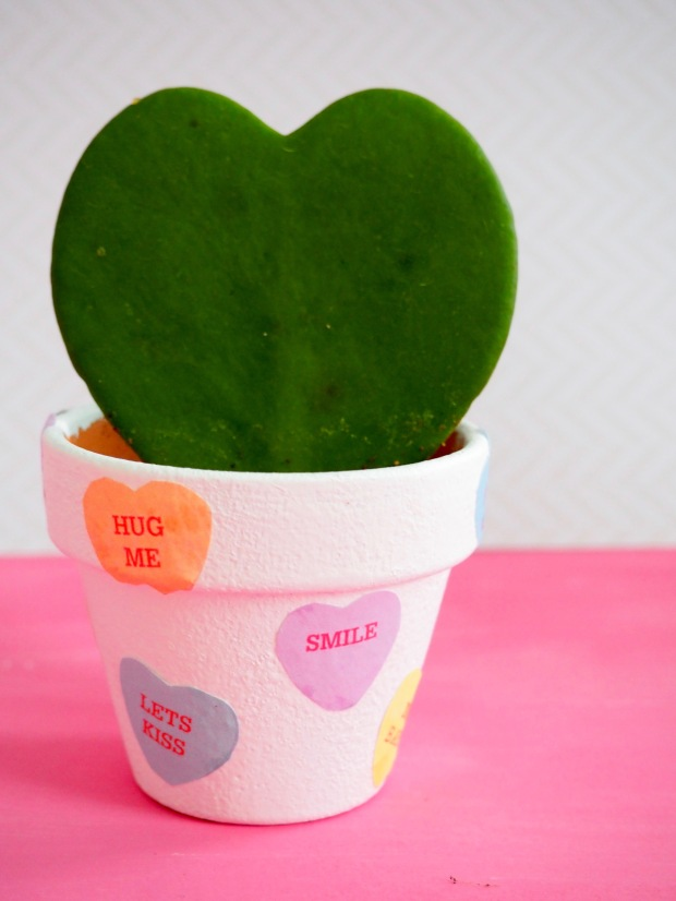 Candy Heart Plant Pot for Valentine's Day | Popcorn and Chocolate